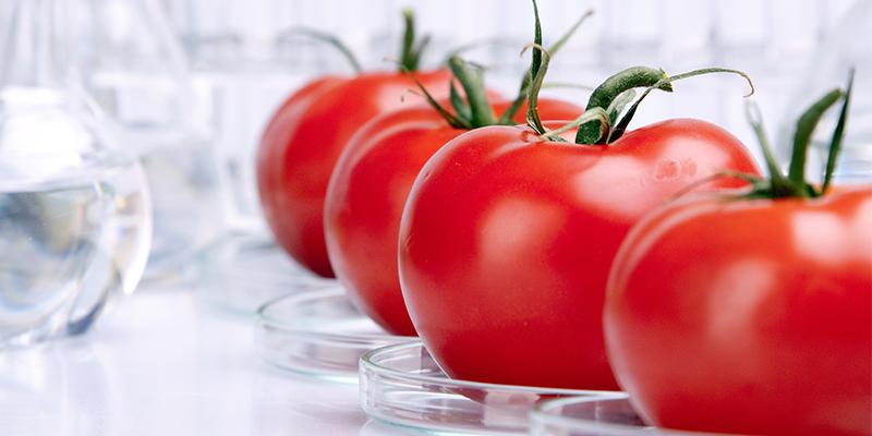 Rischio chimico nell'alimentazione: introduzione
