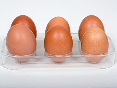 Uova frigorifero