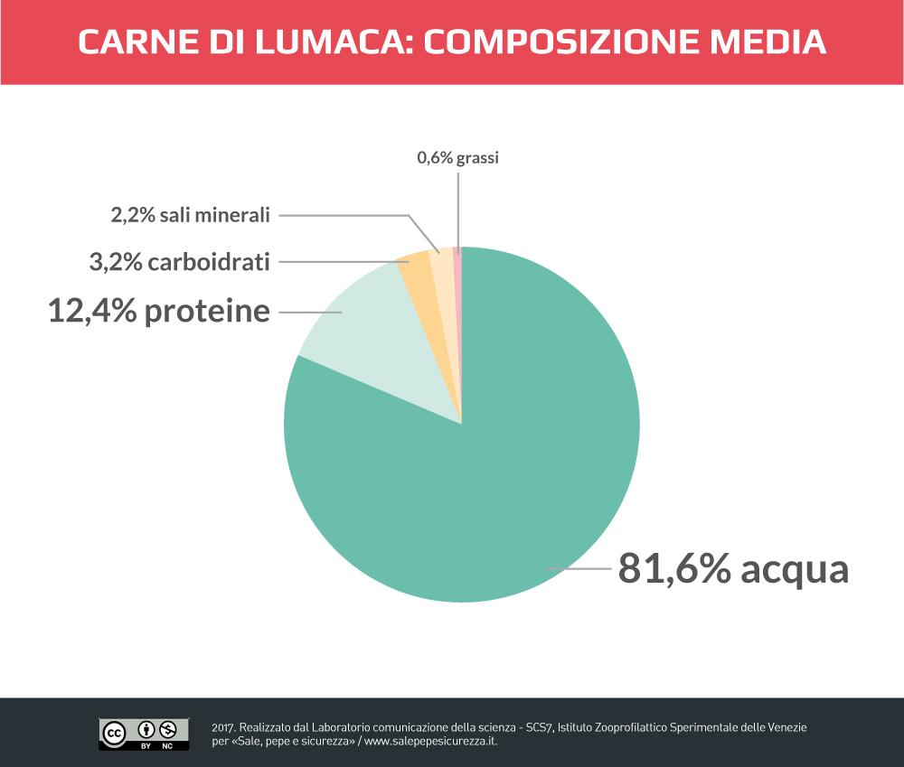 Carne di lumaca: composizione media