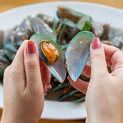 Molluschi bivalvi freschi