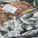 Come riconoscere il pesce fresco? Un vademecum per il consumatore