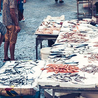 Igiene bancone vendita pesce