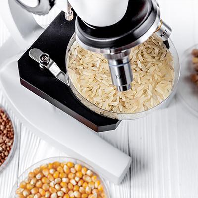 microscopio analisi alimenti